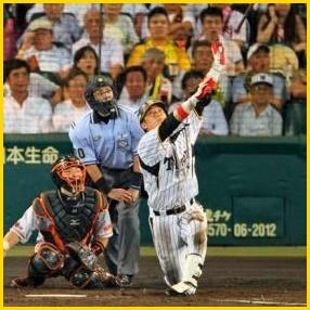 新井良太 阪神タイガース