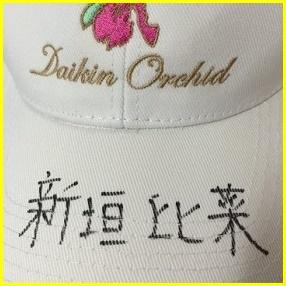 新垣比菜 女子ゴルフ
