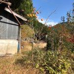 田舎暮らしは仕事が無い?奈良の実家での生活の現実とお金事情